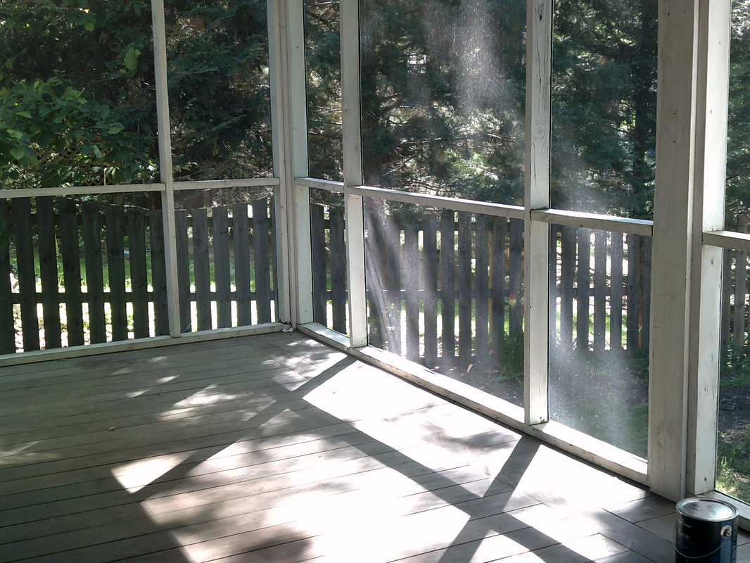 Picture of a screened-in porch with sagging screens and old paint