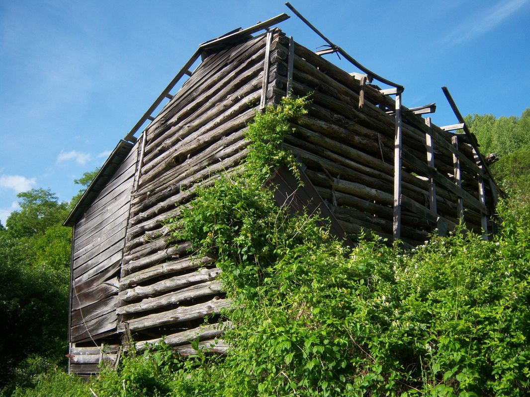 Log built tobacco barn in need of roof